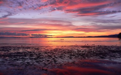 Of-the-dawn-sun-and-beauty-of-the-sky-reflecting-in-the-beach-and-sea